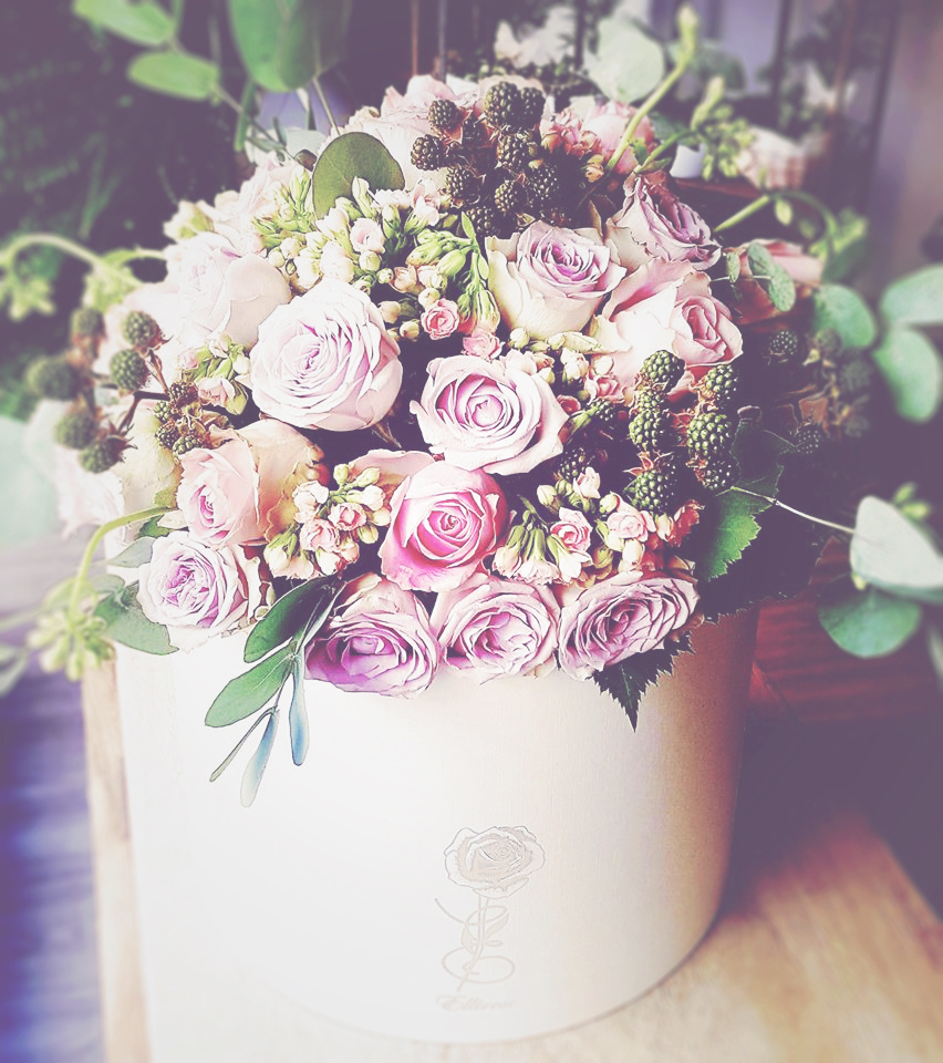 rose rosa composizione floreale fiori gallarate ellirose shadowplaystudio